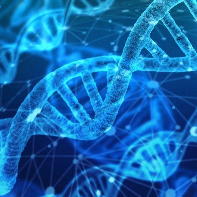 PRESSE | An die DNA anpassen